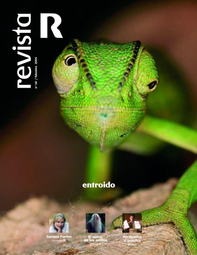 Revista R 8