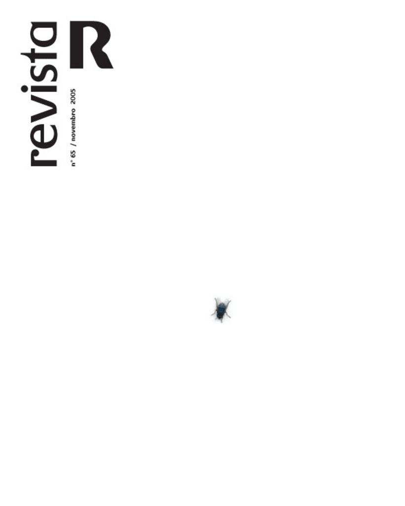 Revista R 11