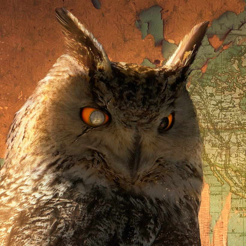 King Owl 1