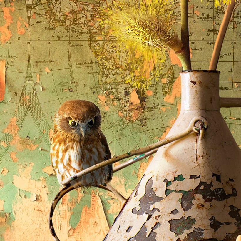 King Owl 4