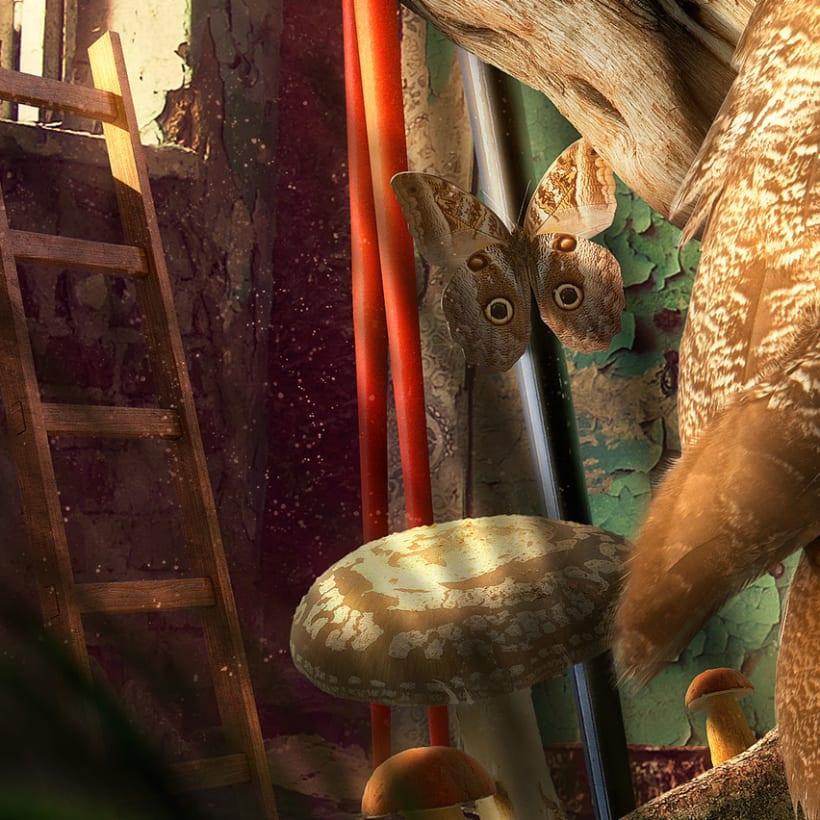King Owl 5