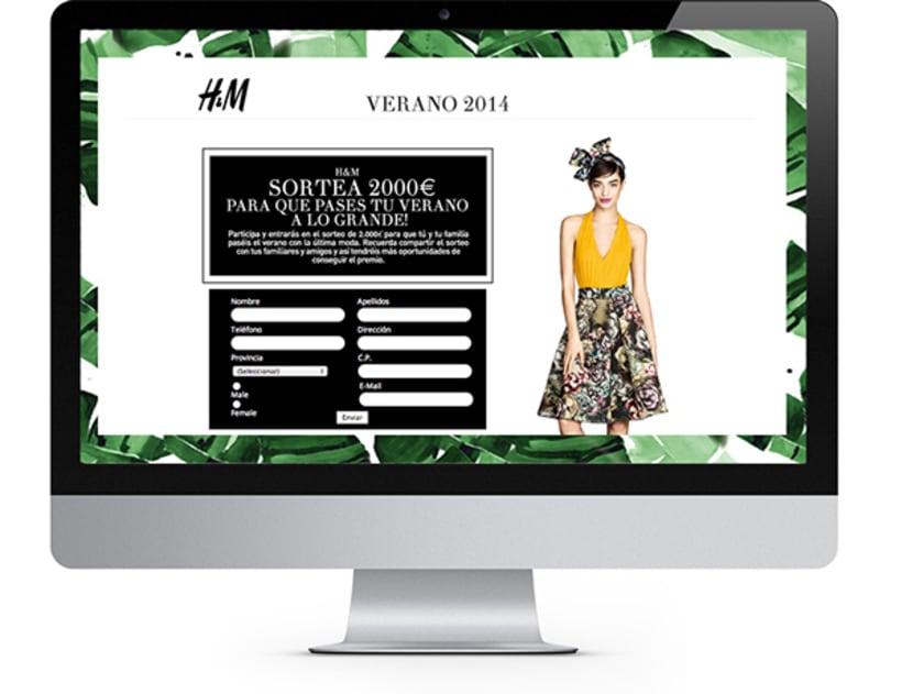 H&M Landing & Newslette 1