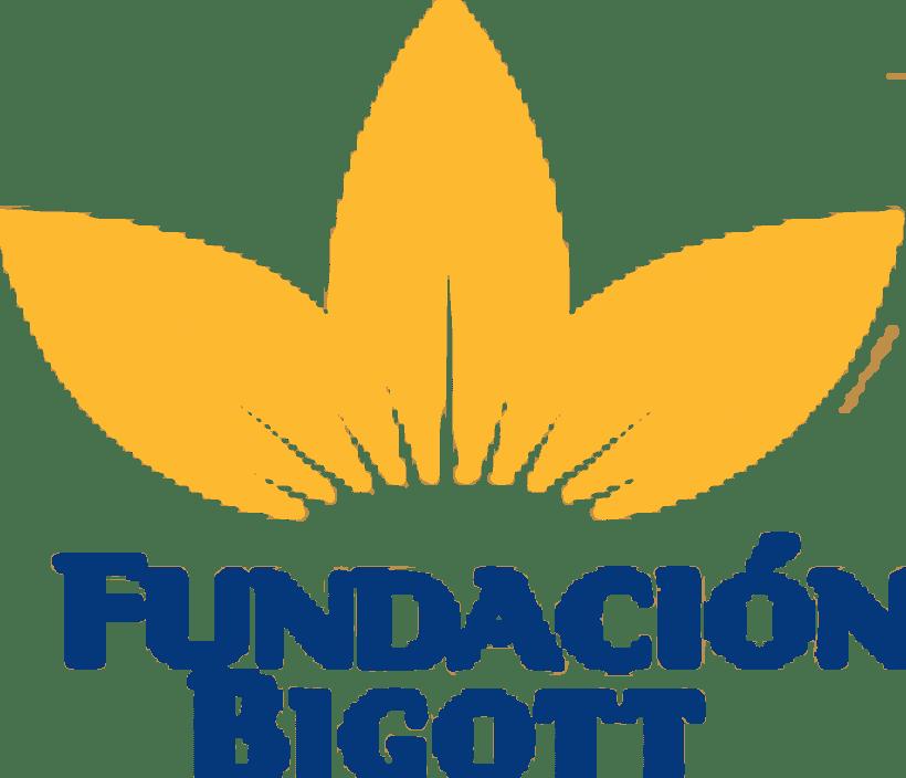 Website Fundación Bigott 0