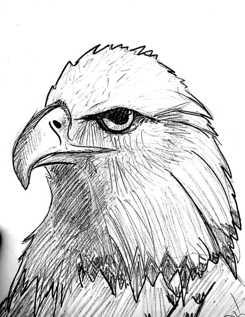 Águila 0