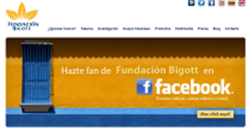 Website Fundación Bigott 1