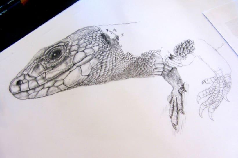 Ocellated lizard (work in progress) -1