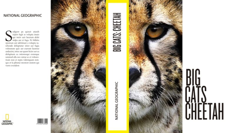 Big Cats. National Geographic 1