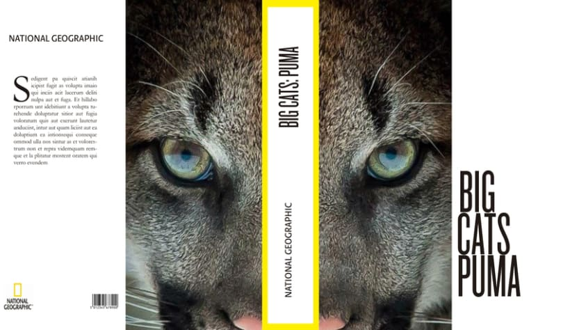 Big Cats. National Geographic 2