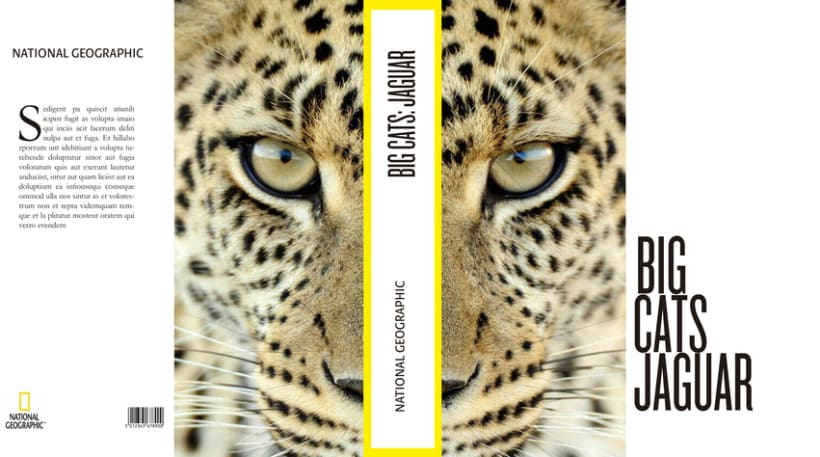Big Cats. National Geographic 3