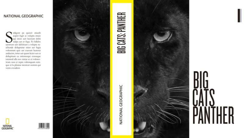 Big Cats. National Geographic 4