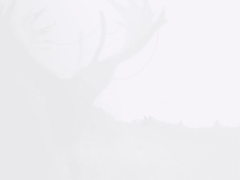 Natura 7