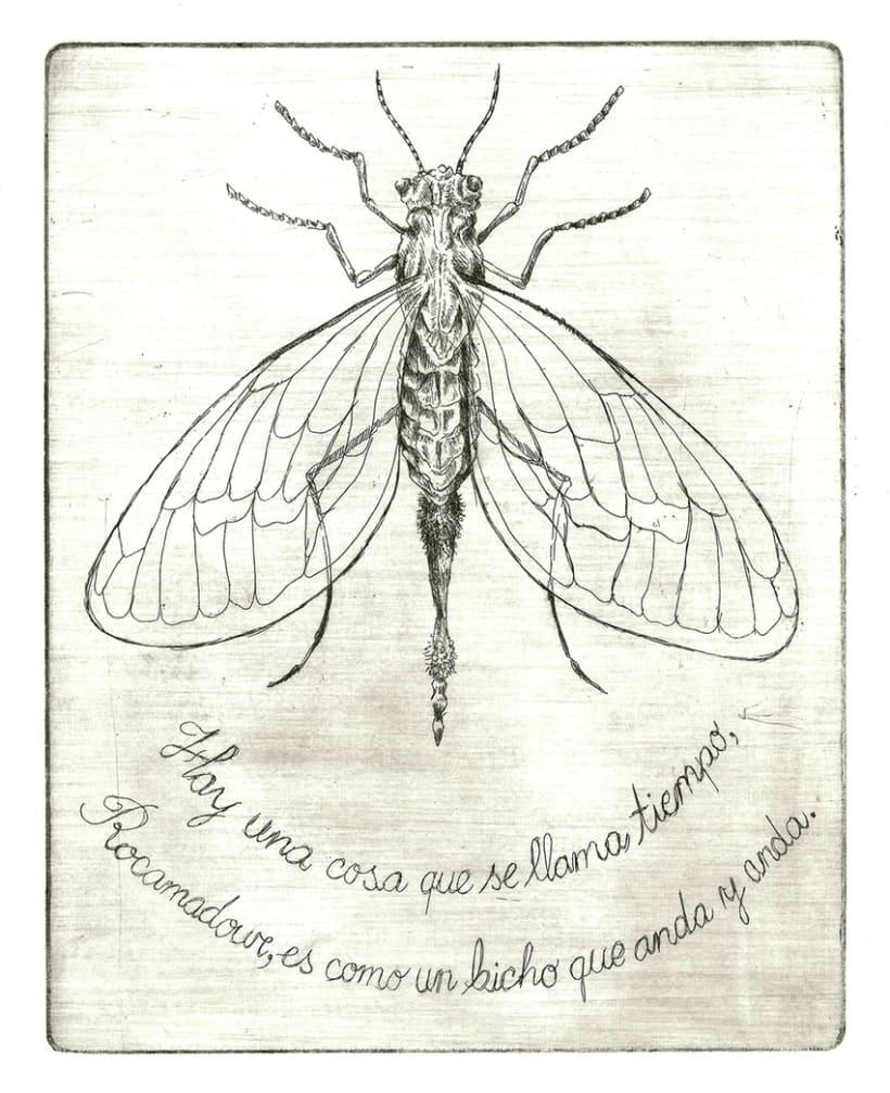 Rayuela ilustrada: Grabados e ilustraciones 17