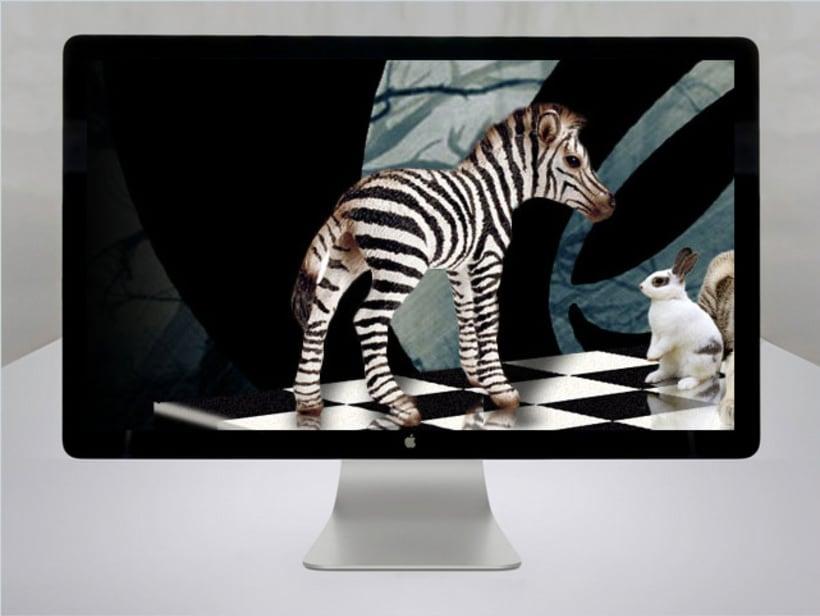 Blanco y negro -1