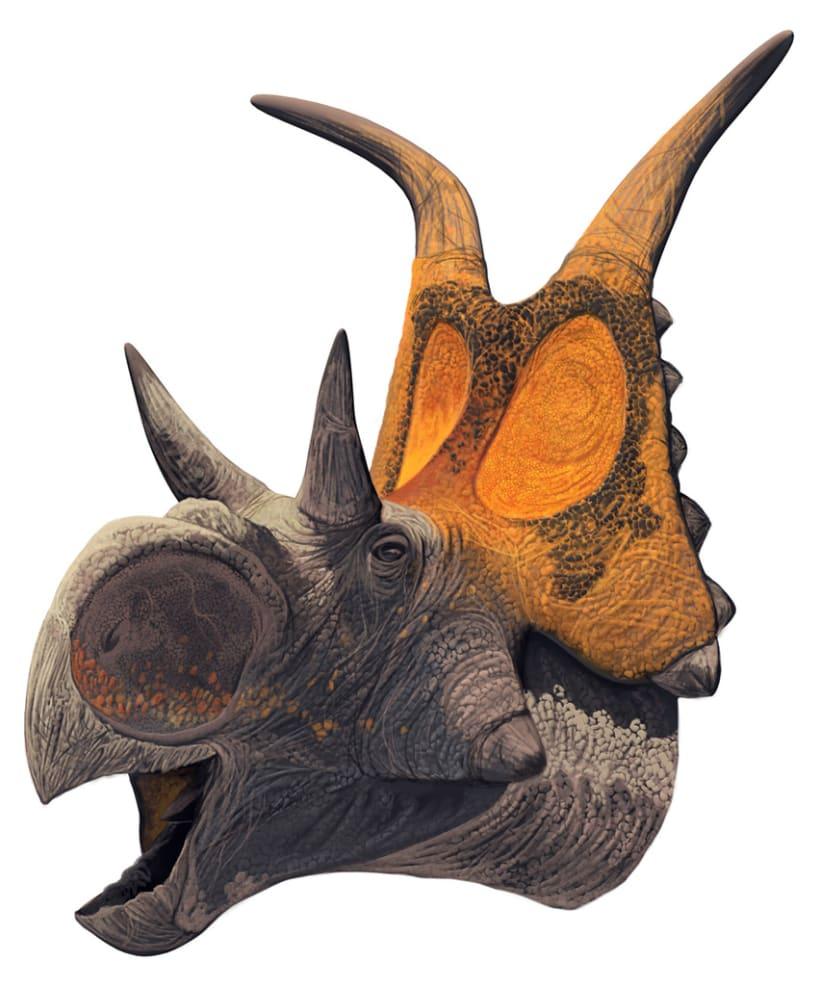Nuevos Dinosaurios Ceratopsios 0