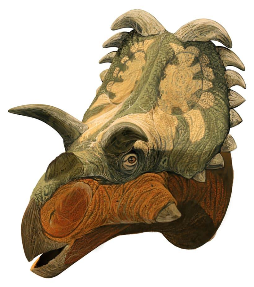 Nuevos Dinosaurios Ceratopsios 4