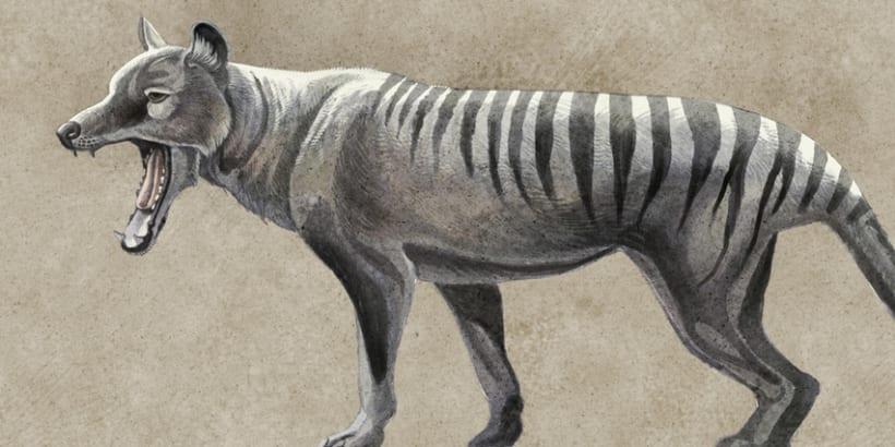 Revivir especies, Quo Junio 2014 4