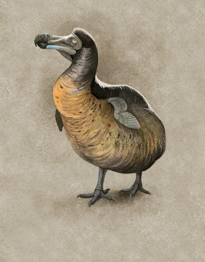 Revivir especies, Quo Junio 2014 6