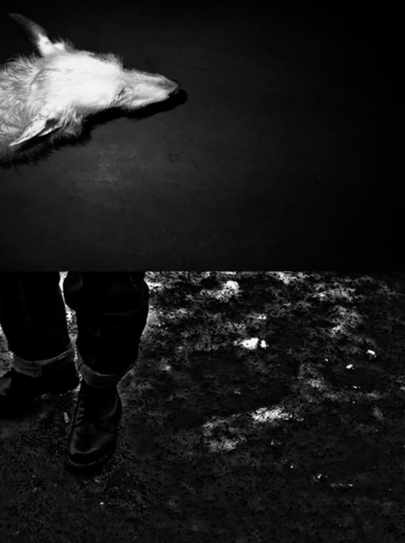 Gris marengo  ( fotografía, proyecto personal , analógico) 4