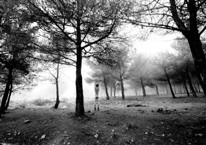 Gris marengo  ( fotografía, proyecto personal , analógico) 8