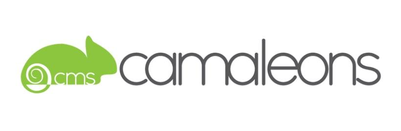 Rediseño logo y web CMS Camaleons 0