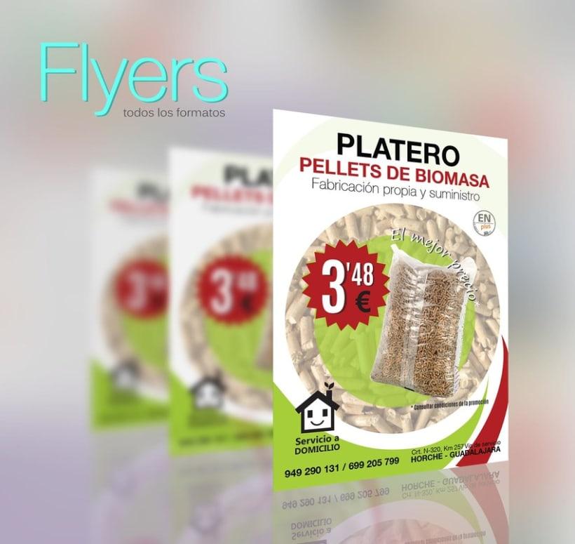 Flyers  -1
