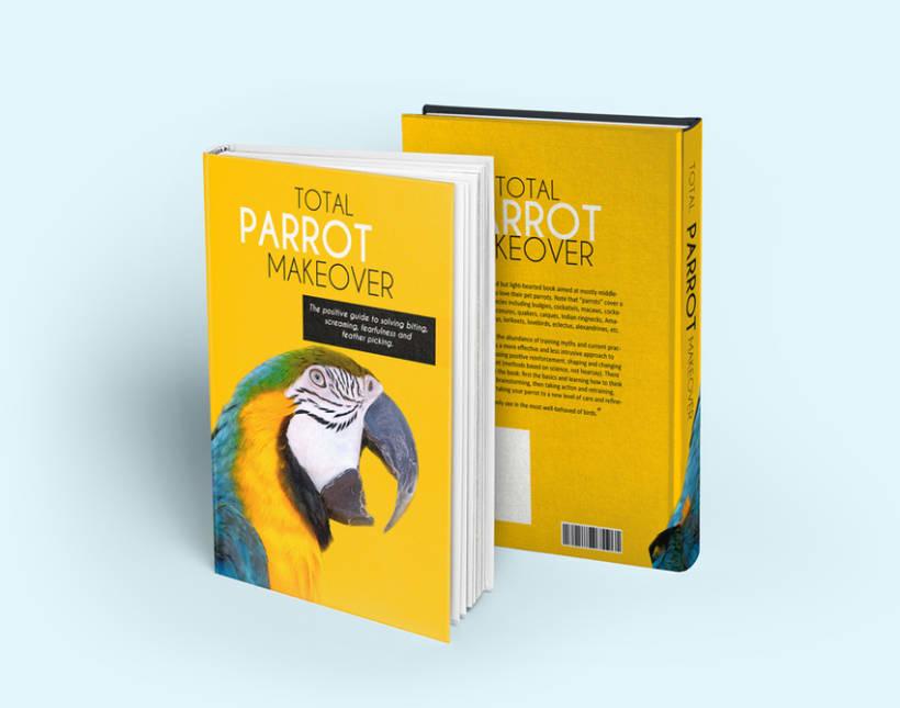 Book Cover Design -1