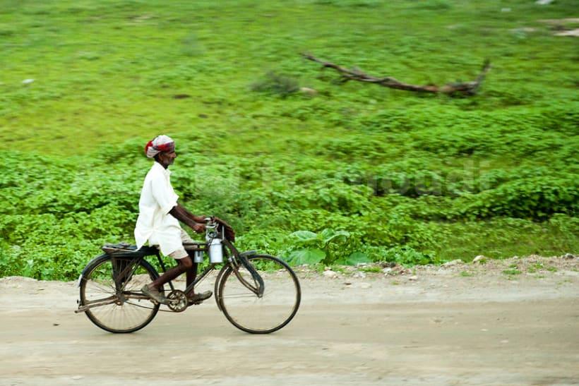 Norte de la India 4