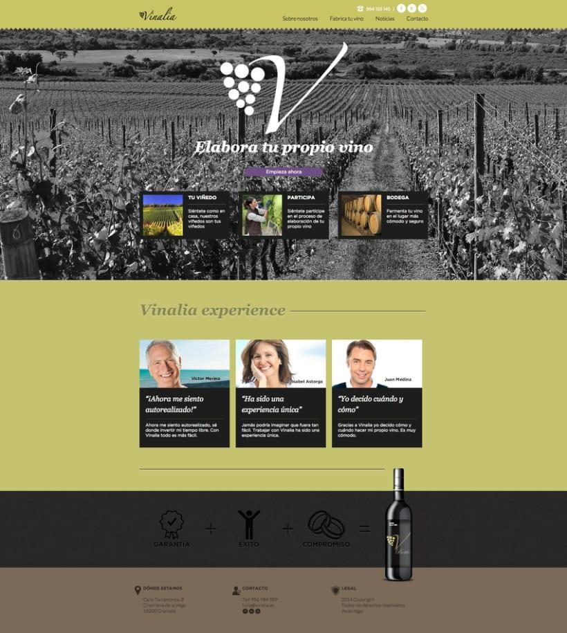 Web corporativa (diseño personalizado y desarrollo del tema en Wordpress): Vinalia 0