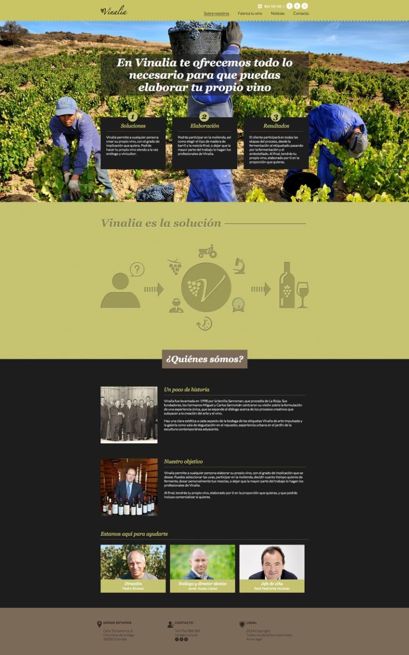 Web corporativa (diseño personalizado y desarrollo del tema en Wordpress): Vinalia 1