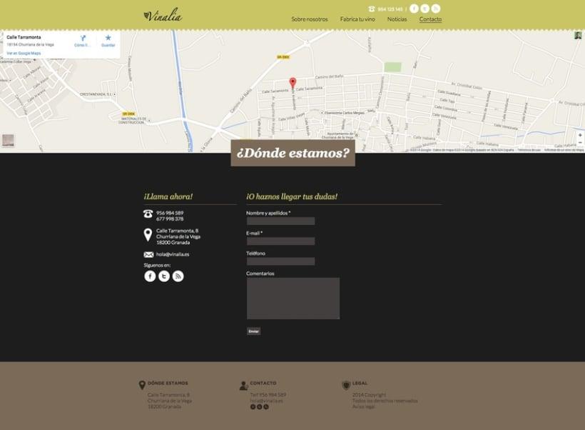 Web corporativa (diseño personalizado y desarrollo del tema en Wordpress): Vinalia 3