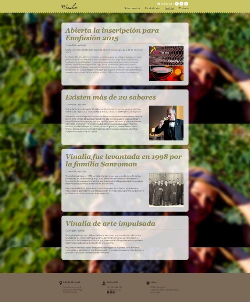 Web corporativa (diseño personalizado y desarrollo del tema en Wordpress): Vinalia 2