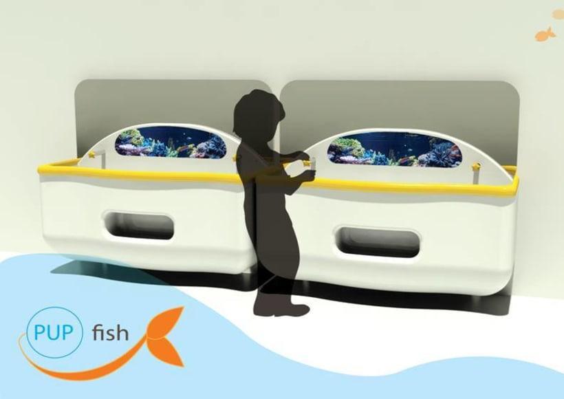 PUP fish -1