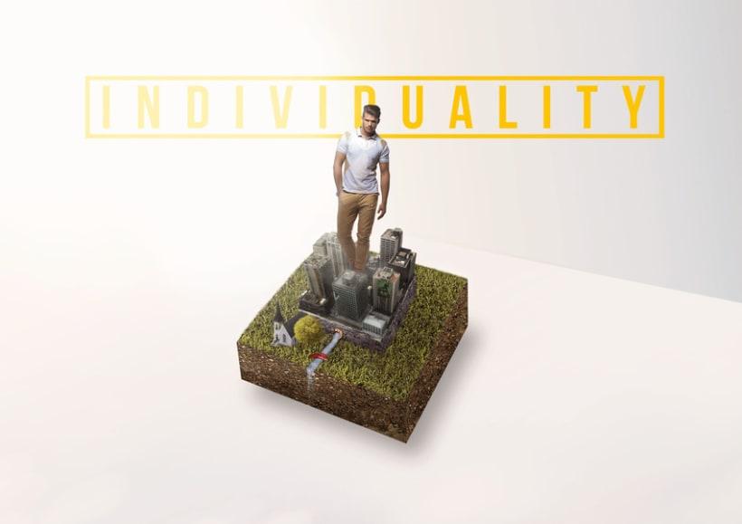 Individuality 1