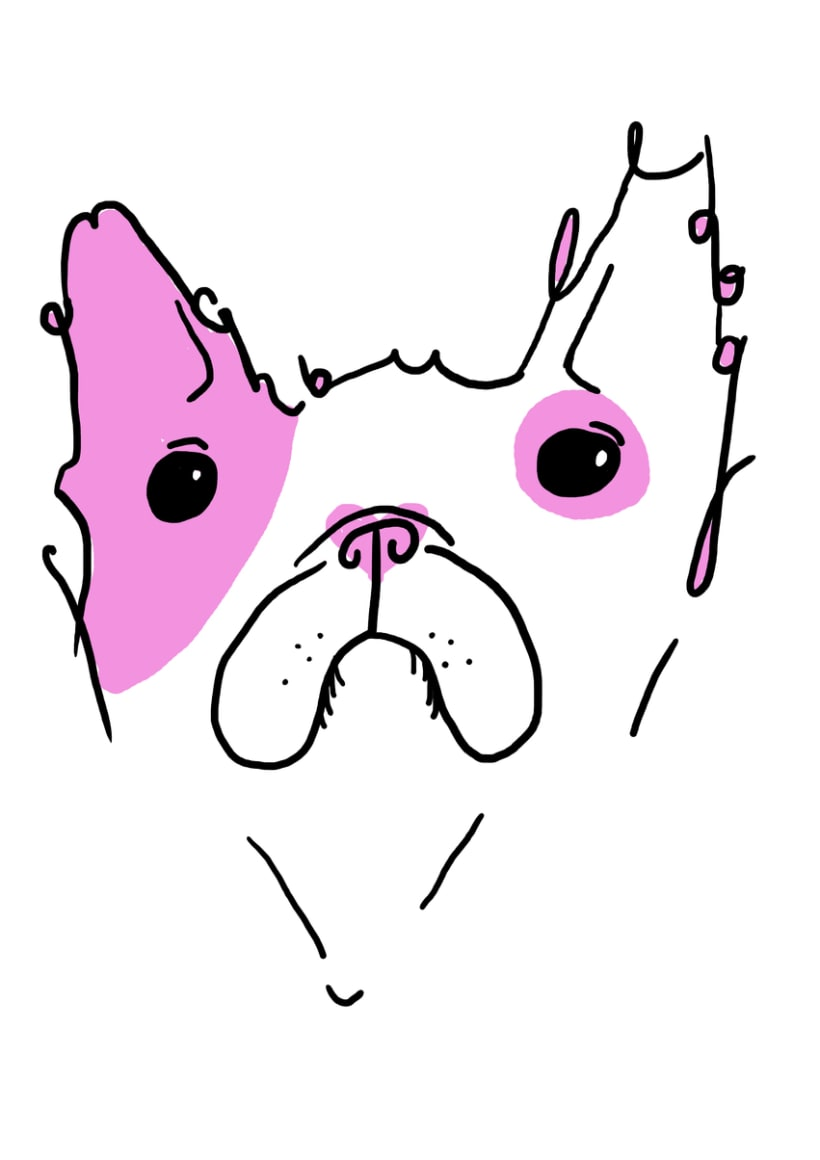 French Bull Dog -1