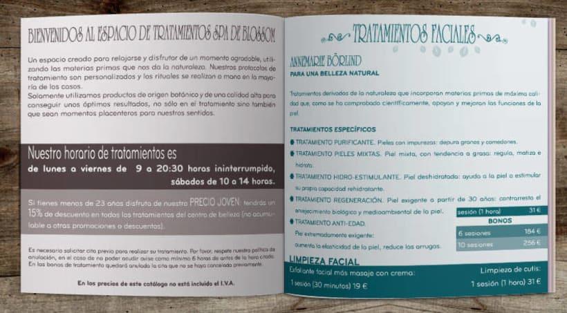 Catálogo Blossom cosméticos 2