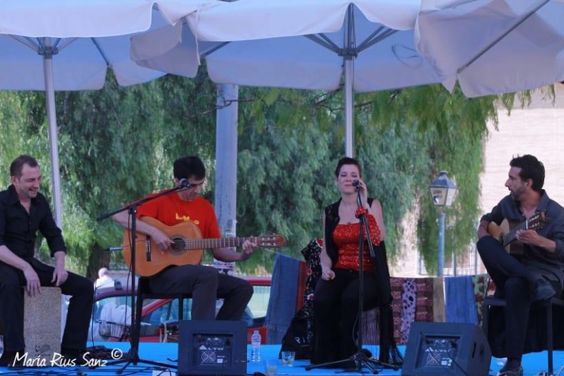 Espai Mediterrani. Festival Cultural 2014 13