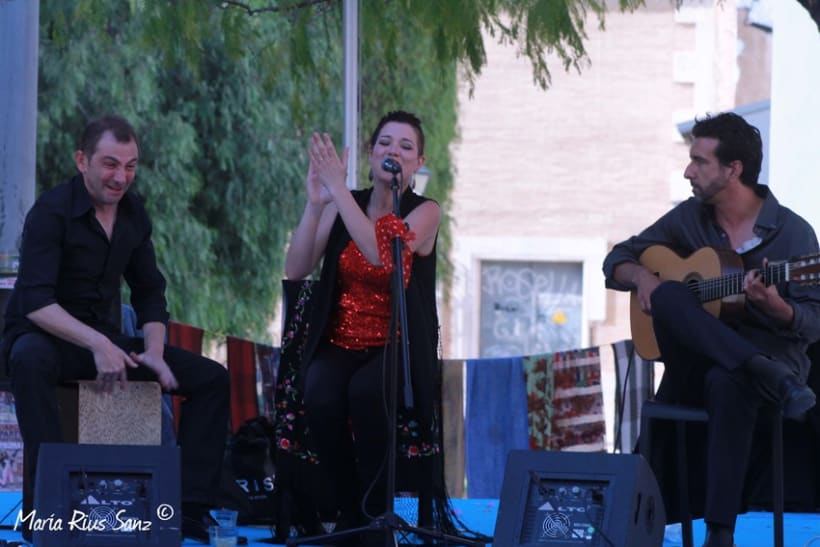 Espai Mediterrani. Festival Cultural 2014 15