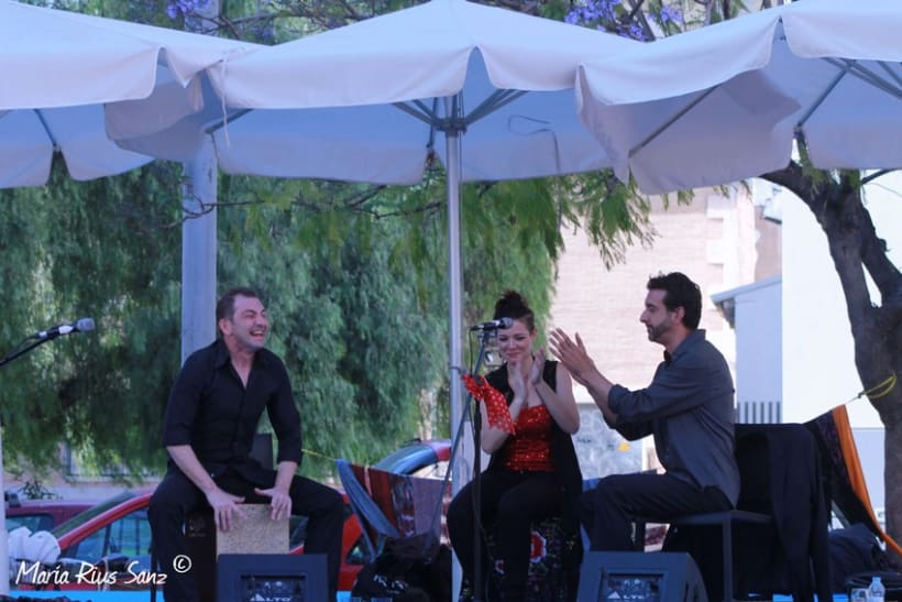 Espai Mediterrani. Festival Cultural 2014 16