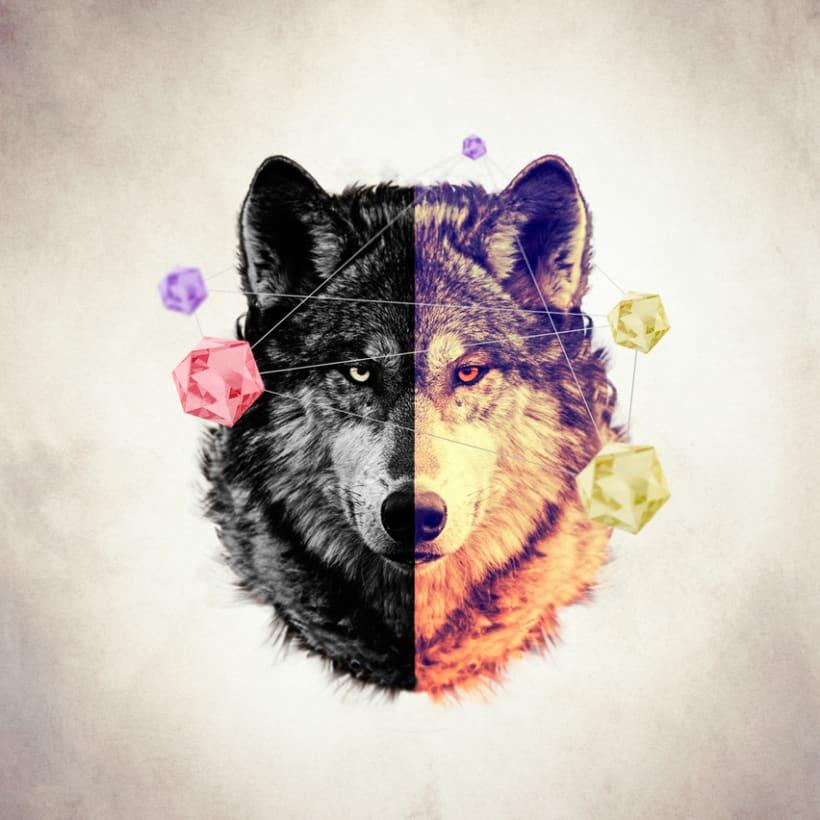 Wolf  -1
