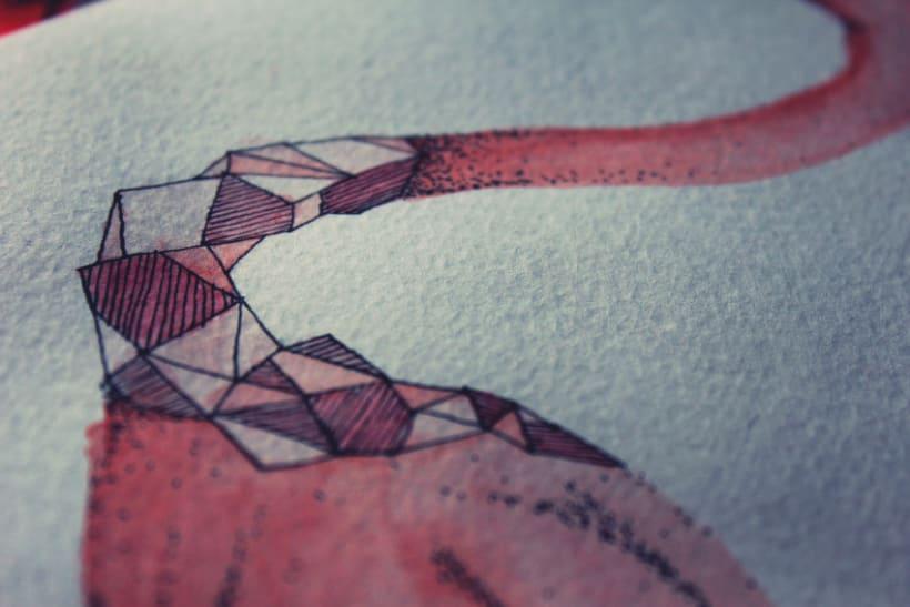 Flamencos Geométricos  8