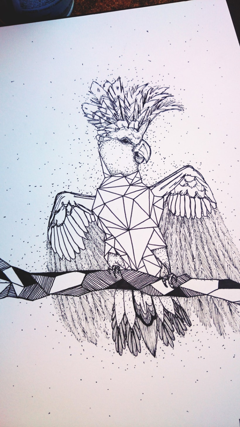 Cacatúa geométrica -1