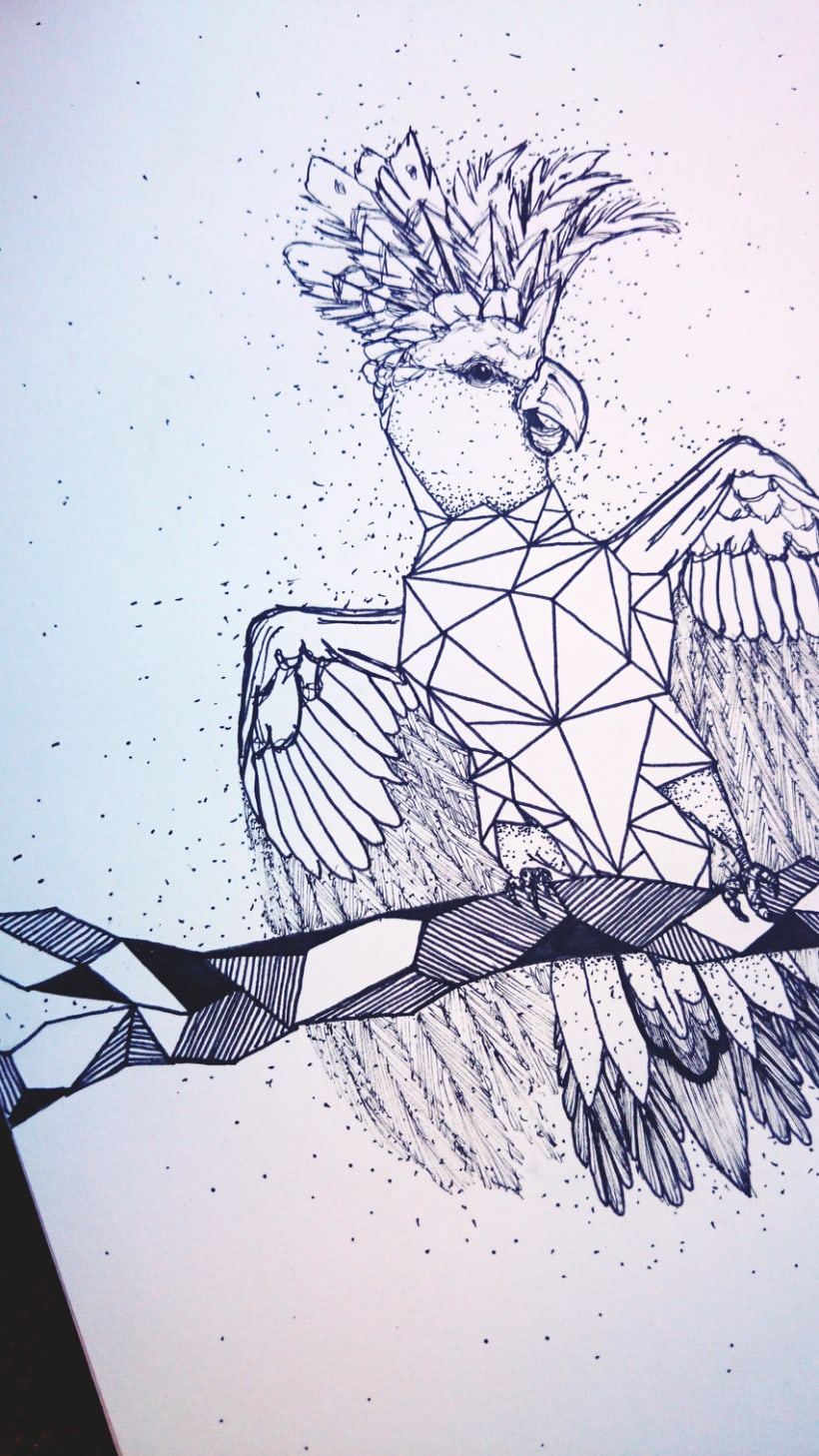 Cacatúa geométrica 4