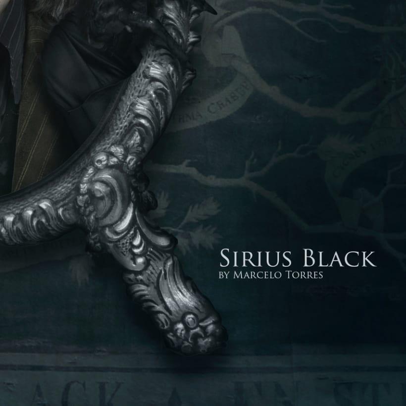 Sirius Black 6