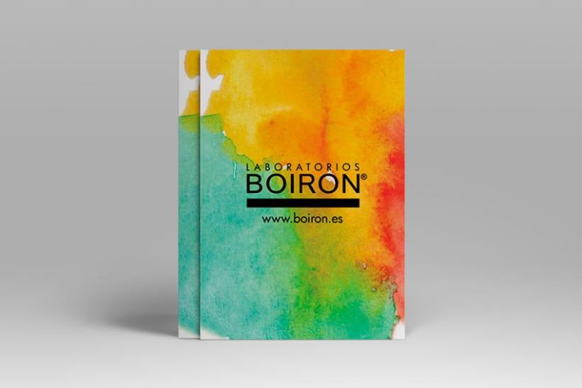 Flyer Boiron 0