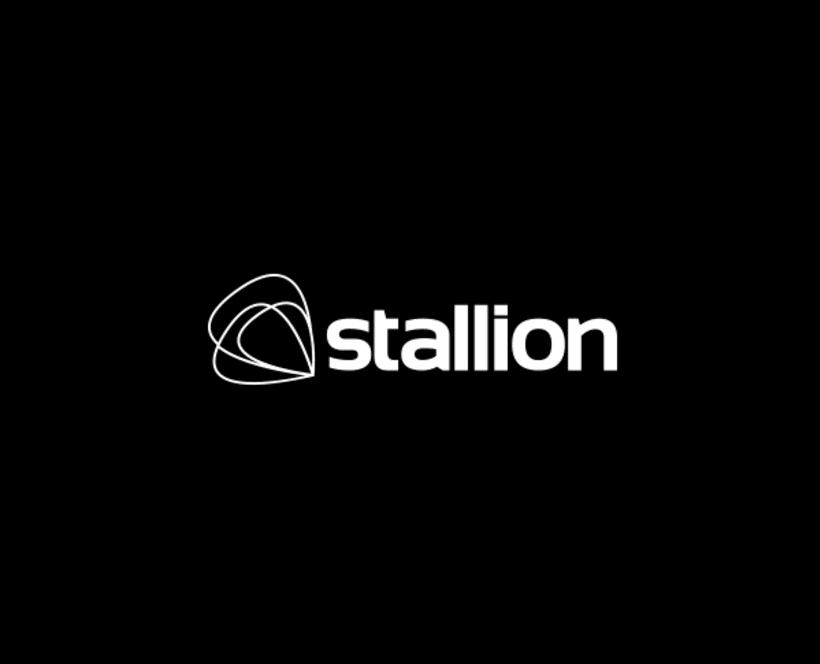 Stallion Enterprises 3