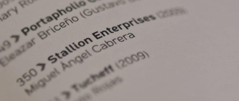 Stallion Enterprises 7