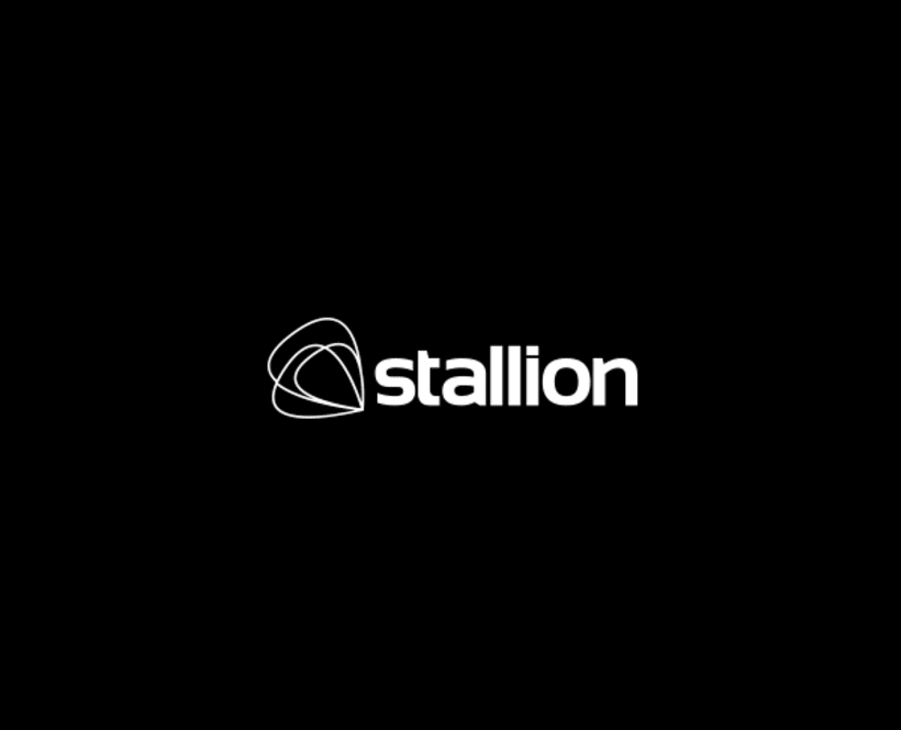 Stallion Enterprises 13