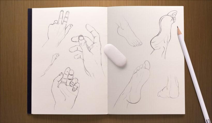 ESDIP · Anatomía Ilustrada 0