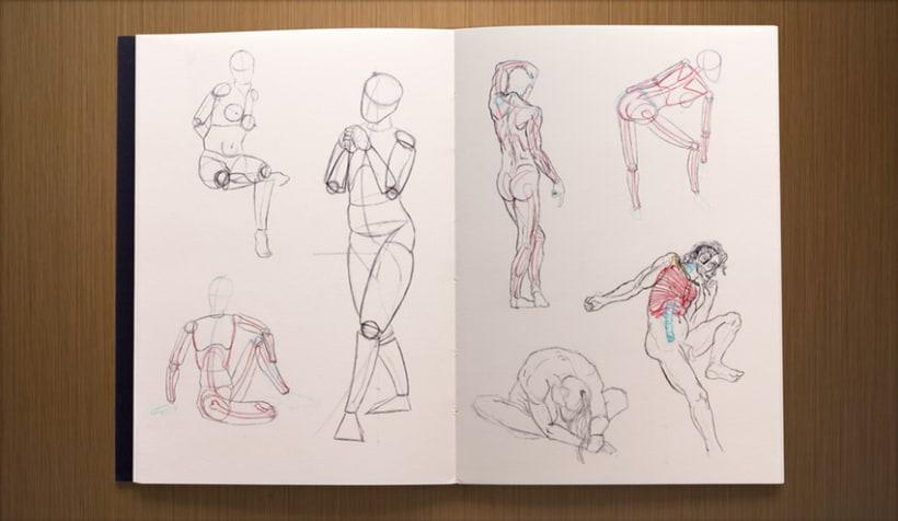 ESDIP · Anatomía Ilustrada 2