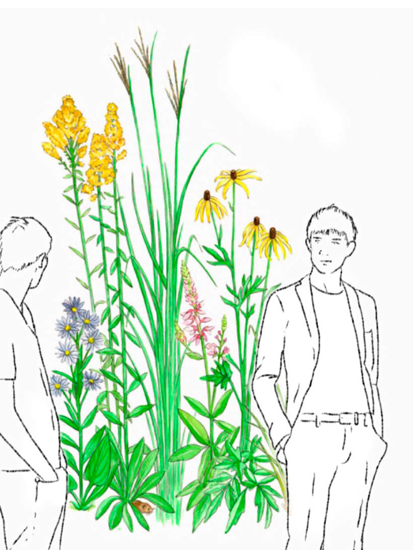 Drawings: Guys and flowers 2